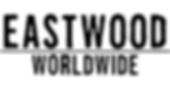 Eastwood Guitars Worldwide