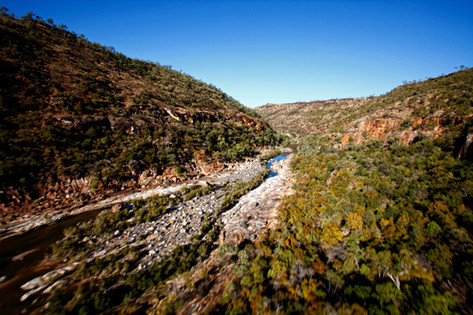 Porcupine Gorge NP, Flinders region, Qld.