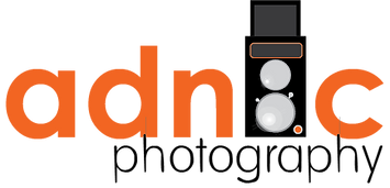 Adnic logo option4.png