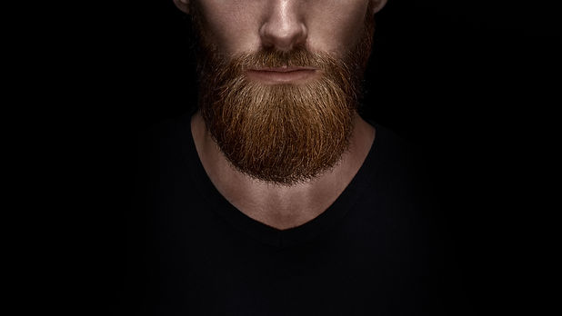 Perfect beard. Close-up of young bearded