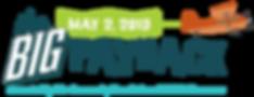 BigPayback-Plane-Logo-2019.png