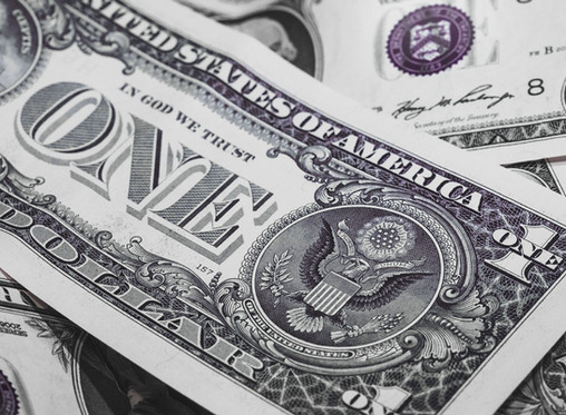 SAVE TONS OF MONEY; BY SWITCHING TO SELF-RELIANCE
