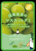 国産果実のフルーツグミ