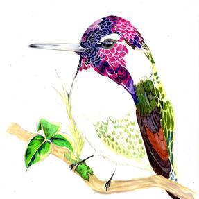 「小さい鳥」