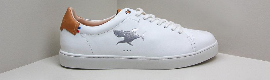 Sessile x JDMB - Requin argent (41 au 46)