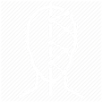 icon brasil 2.png
