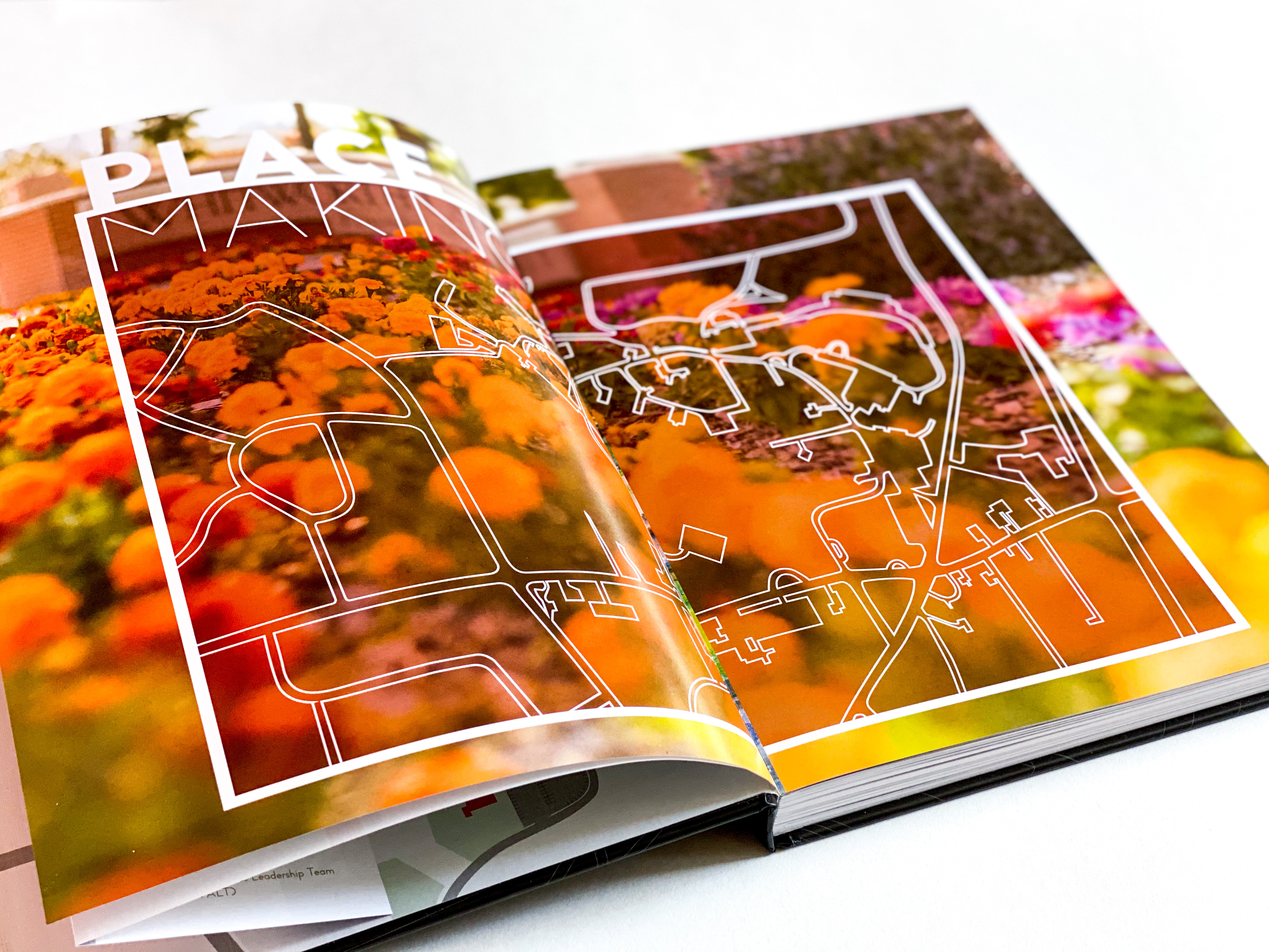 Divider Pages