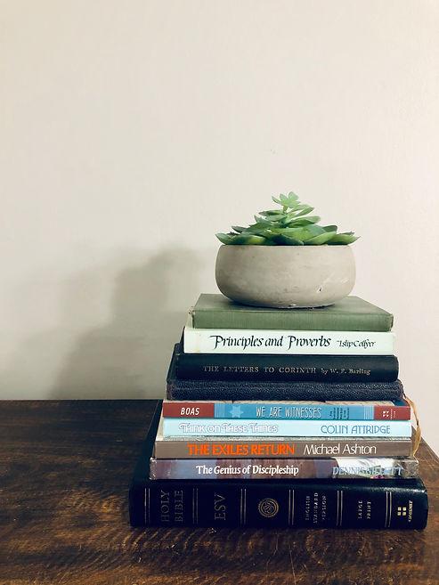books and cactus 2.jpeg