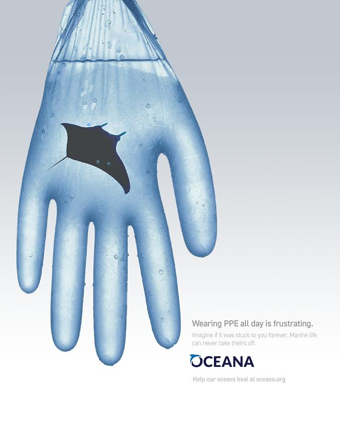 oceana 3.png