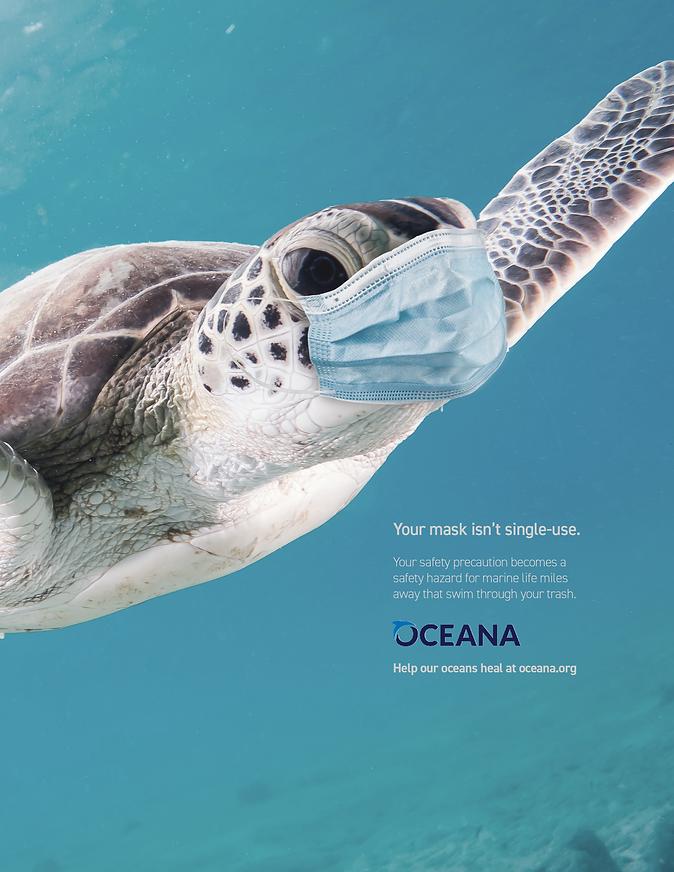 oceana 1_.png