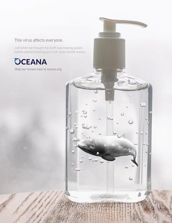 Oceana 2.png