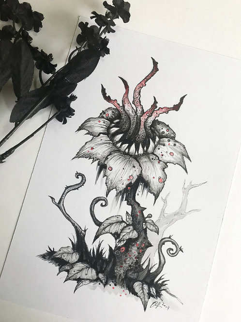 Poison Flower Original Drawing