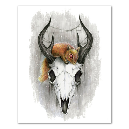"Squirrel Skull - 8"" x 10"" Art Print"