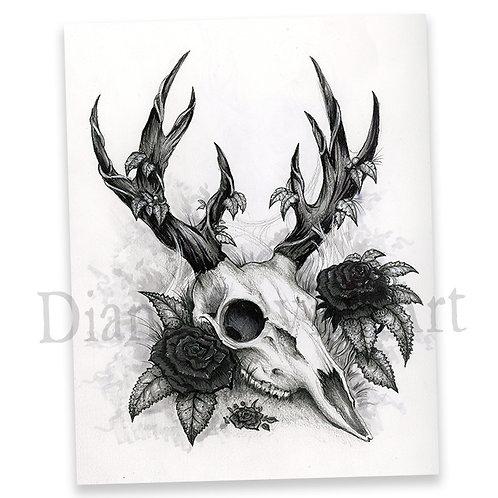 """Strangely Macabre 11"""" x 14"""" Deer Skull Art Print"""