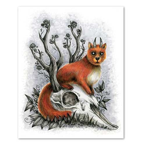"Pine Marten Skull- 8"" x 10"" Art Print"