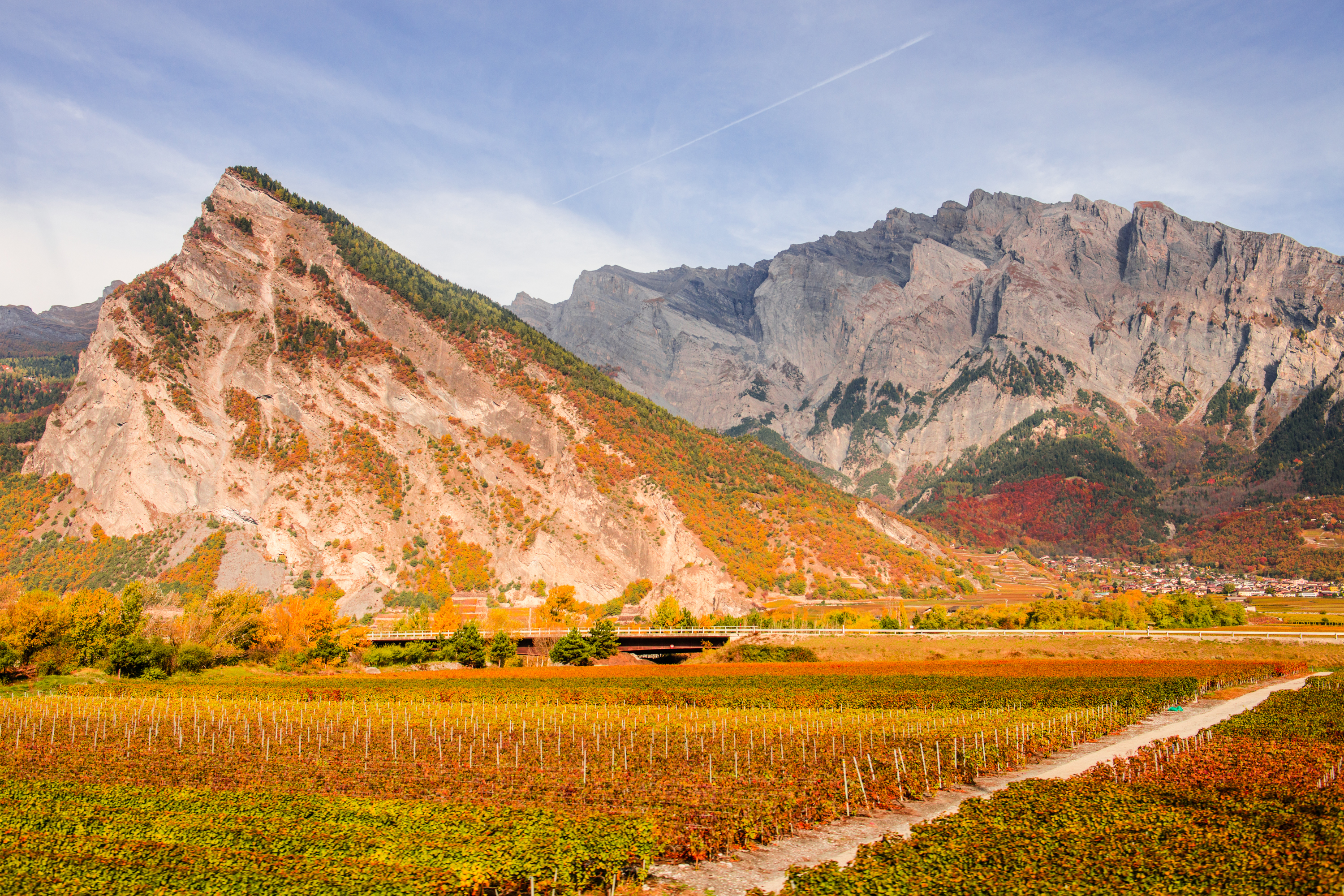 Valais vineyard autumn Switzerland
