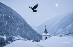 Winter of Lötschental, Valais