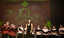 Chinese Spring festival Gala 2014