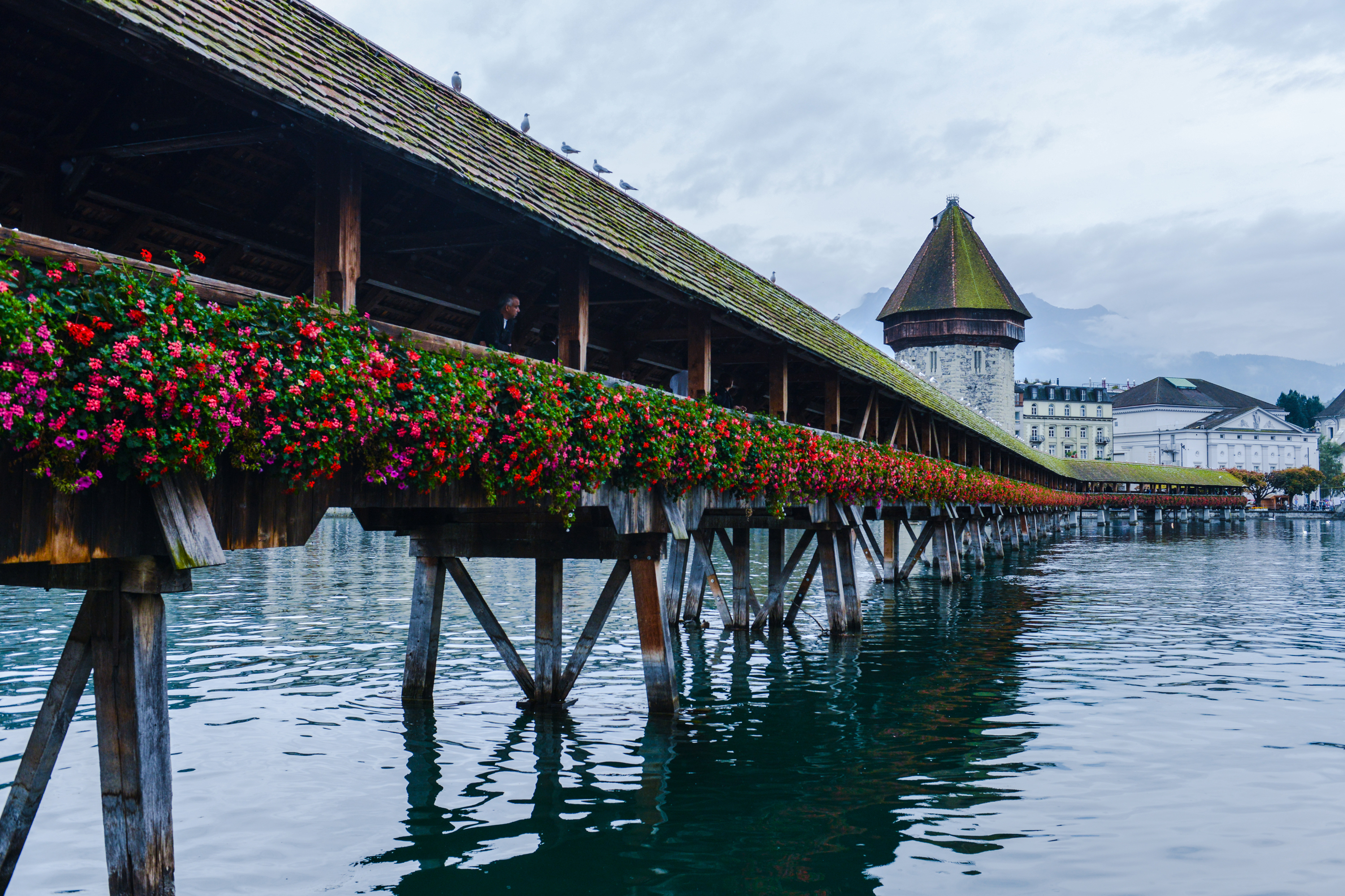 Chapel bridge in Luzern
