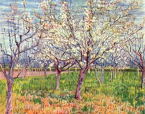 Van gogh flowering orchards