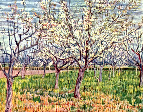 Van gogh flowering orchards