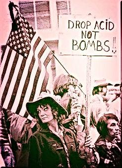 usa vietnam drop acid not bombs