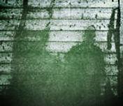hiroshma shadows