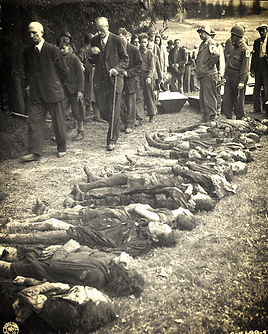german villagers forced to look at concentration camp dead victims