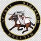 imgbin-knights-templar-seal-freemasonry-