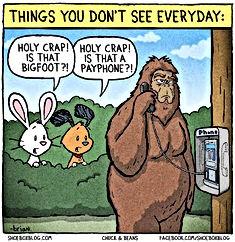 funny cartoon bigfoot payphone