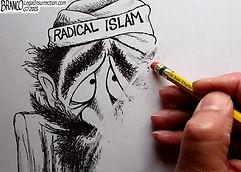 wipe out radical islam cartoon