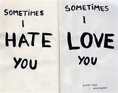 Sometimes I Hate You Sometimes I Love You