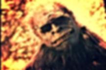 bigfoot sunglasses