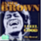 james brown i feel good the best of