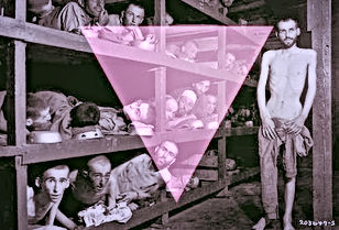 gays in nazi concentration camps