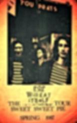 Pop Will Eat Itself Tour Sweet Sweet Pie 1987