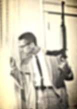 malcolm x with gun