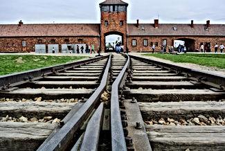 Auschwitz rail tracks