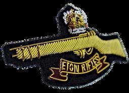 eton-rifles-crown-patch-badge-enfield_36