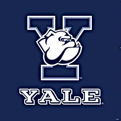 product_y_a_yale-bulldogs-blue-ps4-pro-s
