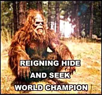 big foot is the hide and seek champion dr heckle