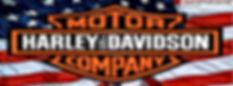 harley davidson motor company
