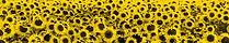 Sun-Flowers-Arles-Van-Gogh-_edited.jpg
