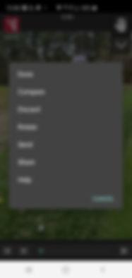 Screenshot_20200323-120042_V1 Golf.jpg