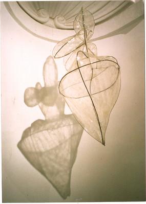 VENUS 1.jpg