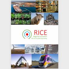 Regional Innovation for a Circular Economy (RICE)