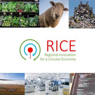 RICE Roadmap