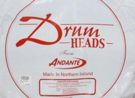 Andante bottom head (snare)