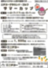 サマーカップチラシ2020.jpg