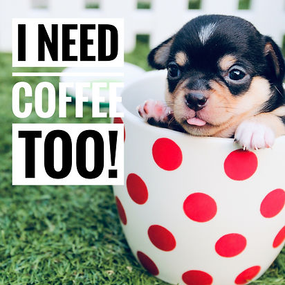 Puppy and Coffee